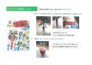 ペットボトル栽培キット3